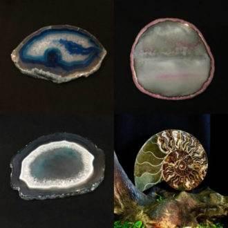 Кристаллы, диски, срезы, аммониты